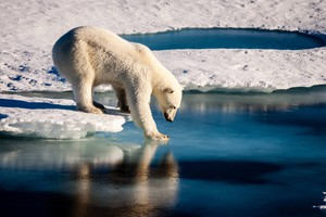 Cover image: Arctic ice melt