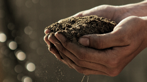 Cover image: World Soil Day