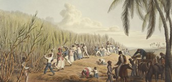 Cover image: International Day for the Remembrance of the Slave Trade and its Abolition