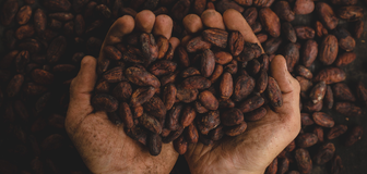 Cover image: Fairtrade Fortnight