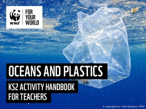 Cover image: The Oceans and Plastic Pollution - KS2 Activity handbook for teachers