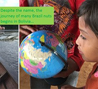 Cover image: Fairtrade Brazil Nut Ecology
